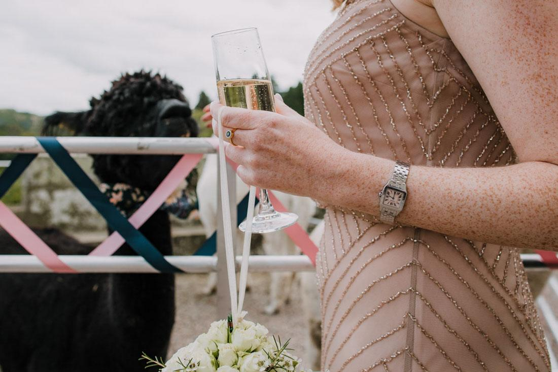 jon harper wedding photography eastnor castle-92-of-
